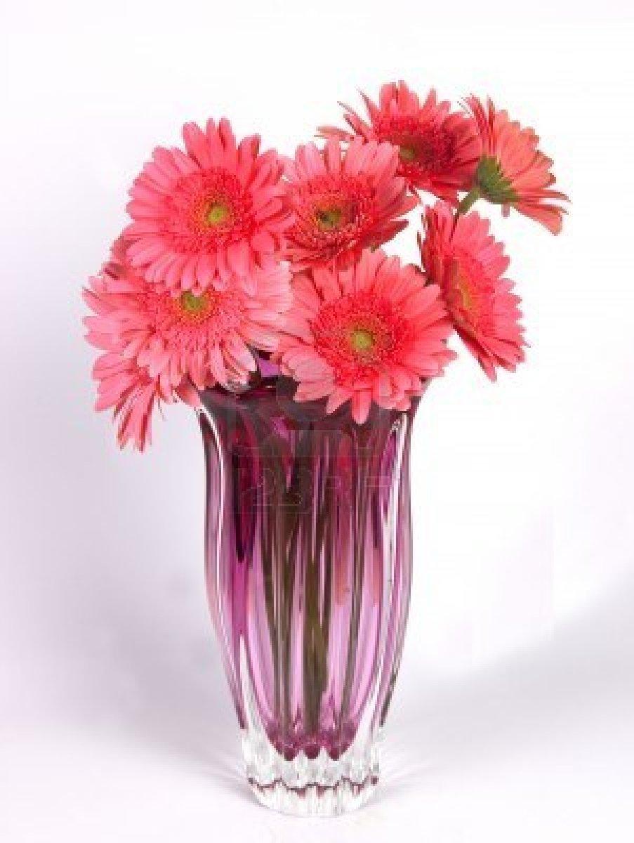 Simplicity is the keynote of all true elegance  Flower